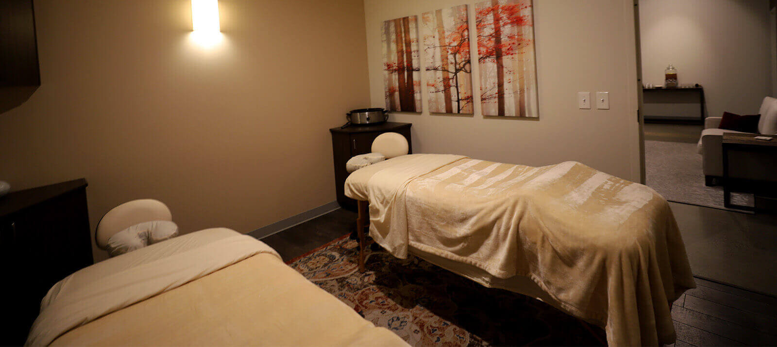 Salt Lake City's Peak Day Spa room - offers microdermabrasion, massage, facial, acupuncture, and spa near me open